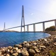 Cable-stayed bridge to Russian Island. Vladivostok. Russia. — Zdjęcie stockowe
