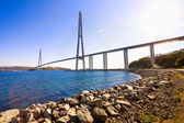 Cable-stayed bridge to Russian Island. Vladivostok. Russia. — Stock Photo