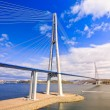 Stock Photo: Cable-stayed bridge to RussiIsland. Vladivostok. Russia.