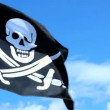 Jolly Roger pirate flag waving over a blue sky. — Stock Video #33691745