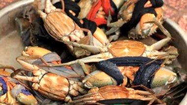 Crabes vivants à vendre à ho chi minh de poissons marché, vietnam. — Vidéo