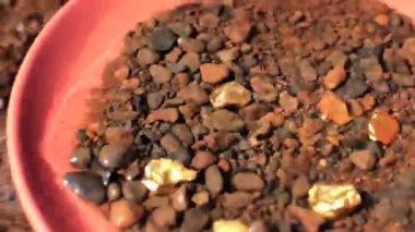 Panning for gold. Actual gold bits in pan. — Video Stock