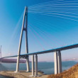 Cable-stayed bridge to Russian Island. Vladivostok. Russia. — Stock Video