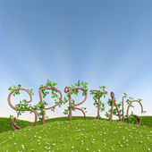 Spring written in letters made of trees — Stock Photo