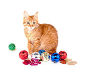 Red Cat with Christmas balls — Stock Photo