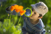 Child observing nature with a magnifying glass — Stock Photo