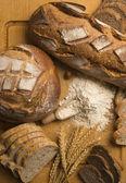 Chleb aparaturze: odmian — Zdjęcie stockowe