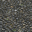 Street round roller-Pebble stone — Stock Photo