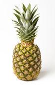 白い背景で隔離のパイナップル — ストック写真
