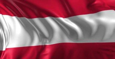 Flag of Austria — Stock Video