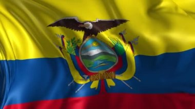 Flag of Ecuador — Stock Video