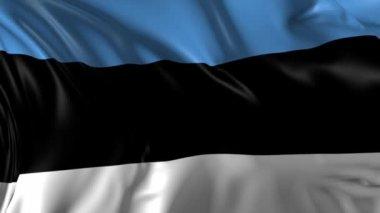 Flag of Estonia — Stock Video