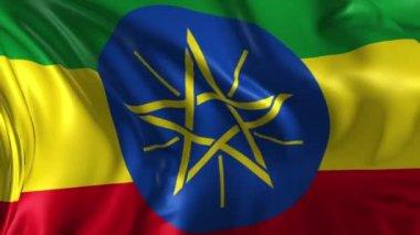 Flag of Ethiopia — Stock Video
