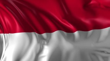 Flag of Indonesia — Stock Video