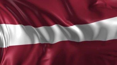 Flag of Latvia — Stock Video