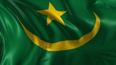 Flag of Mauritania — Stock Video