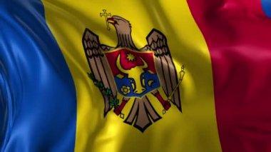 Flag of Moldova — Stock Video