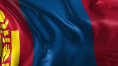 Flag of Mongolia — Stock Video