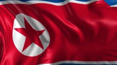 Flag of North Korea — Stock Video