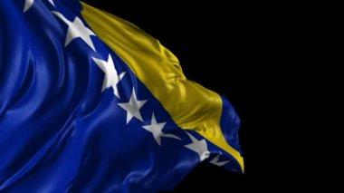 Flag of Bosnia and Herzegovina — Stock Video