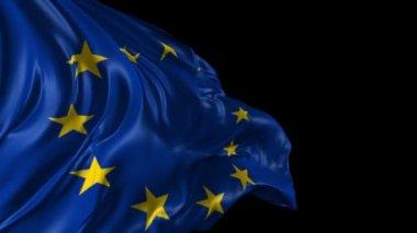 Flag of the European Union — Stock Video