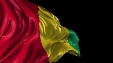 Ekvator ginesi cumhuriyeti bayrağı — Stok video