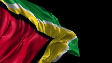 Flag of Guyana — Stock Video