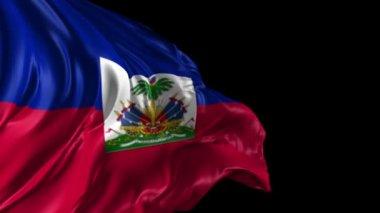 Flag of Haiti — Stock Video