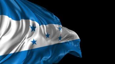 Flag of Honduras — Stock Video