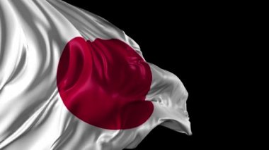 Japan flag — Stock Video