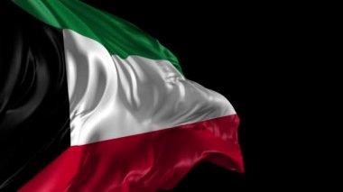 Flag of Kuwait — Stock Video