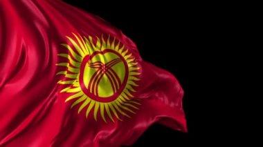 Flag of Kyrgyzstan — Stock Video