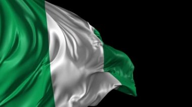 Flag of Nigeria — Stock Video