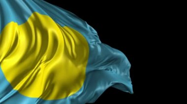Flag of Palau — Stock Video