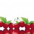 Cherries — Stock Photo #24928377