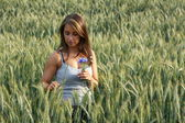 Woman in a wheat field on a summer evening — Stock Photo