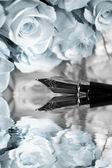 Růže a plnicí pero — Stock fotografie