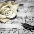 Stock Photo: Rose on musical notes page