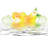 Hearts with flowers in water — Stock Photo