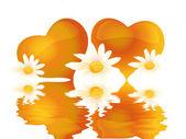 Srdce s květinami ve vodě — Stock fotografie