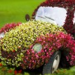 Stock Photo: Flower-car
