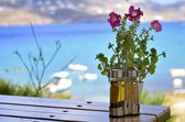 Flowers and sea — Stock Photo