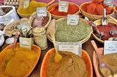 Variety of spices — Foto de Stock
