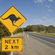 Look out for kangaroos — Stock Photo #25602027