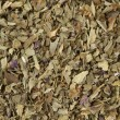 Stock Photo: Dried Basil Leaves Macro