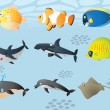 Vector cute sealife — Stock Vector