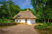 Casa rural antigua con techo de paja — Foto de Stock