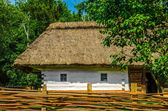 Ancient traditional ukrainian rural cottage with a straw roof — Stock Photo