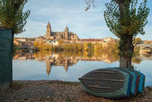 Salamanca Cathedral reflected in the Rio Tormes — Stock Photo