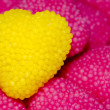 Gummy heart — Stock Photo #41380335